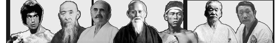 7 Martial Arts Masters