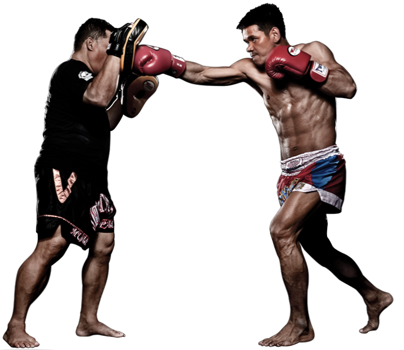 tutorial de Muay thai , Karate , mma