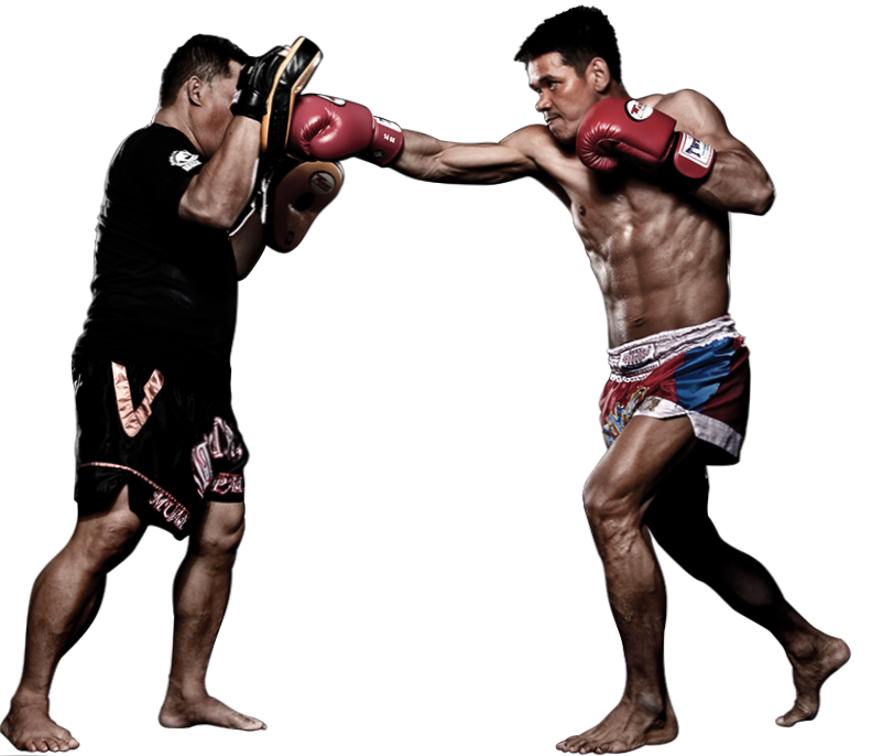 tutorial de Muay thai , Karate , mma