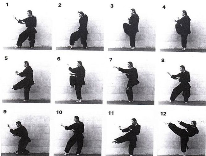 dragon form kung fu