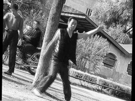 Master Tong Xing Yi Quan and Ba Gua Multi-Tree Training