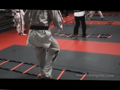 Taekwondo Training For Speed-Taekwondo Techniques