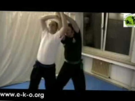 Kung Fu Fighting: Eagle Claw Qin Na/Chin Na Partner-Set (Joint Locks)