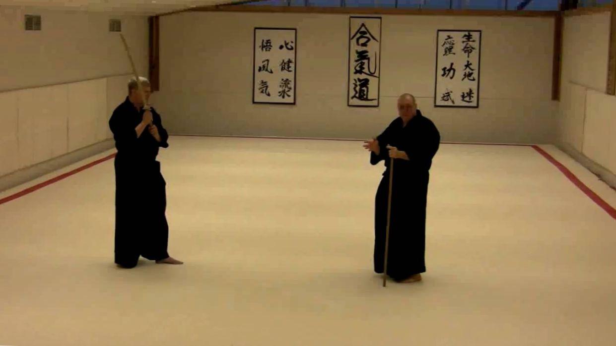 Jodo training matrix- Big, Strong, Fast, Light
