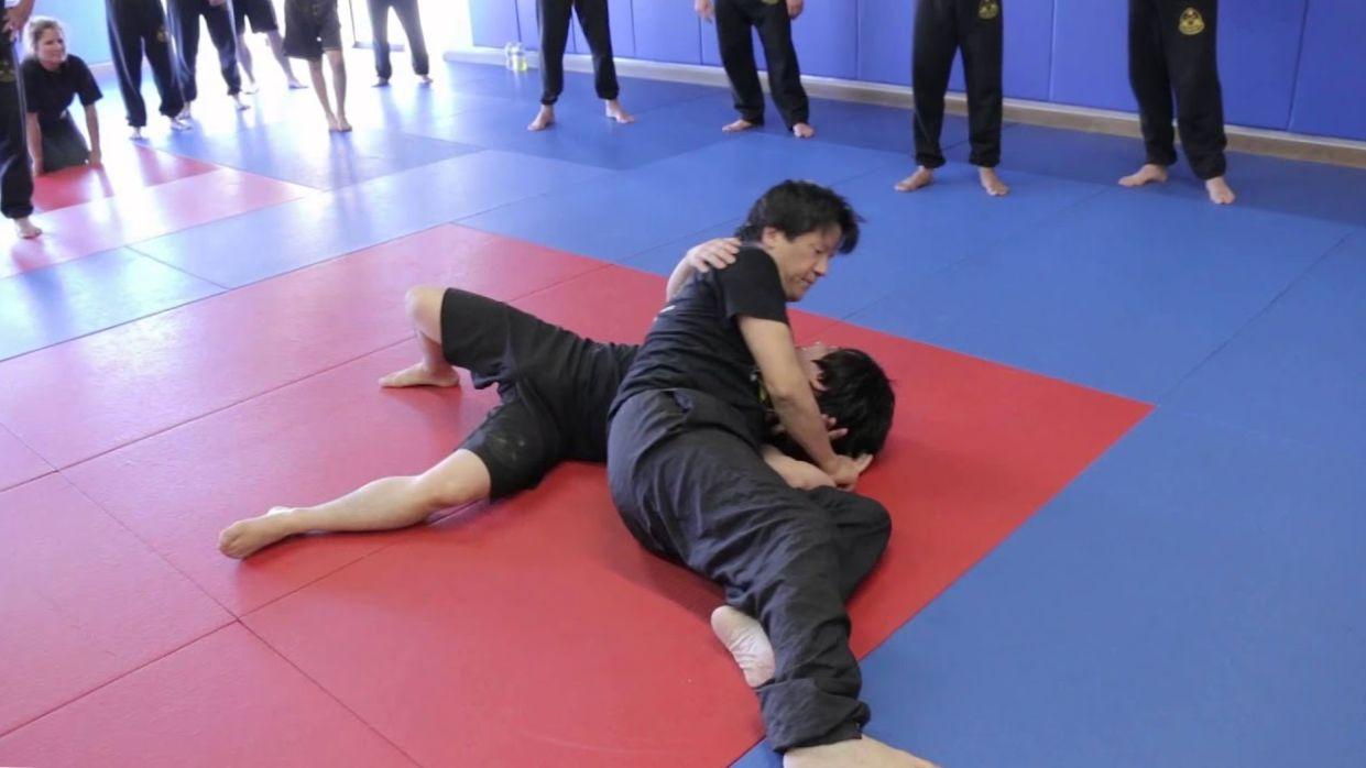 2014 TWTM Wing Chun DVD – Sifu Francis Fong